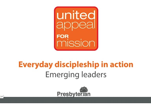 United Appeal 2017 Emerging Leaders